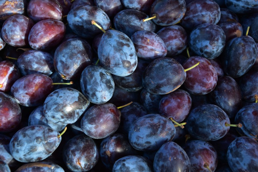 New Research on Dried Plums and Bone Health