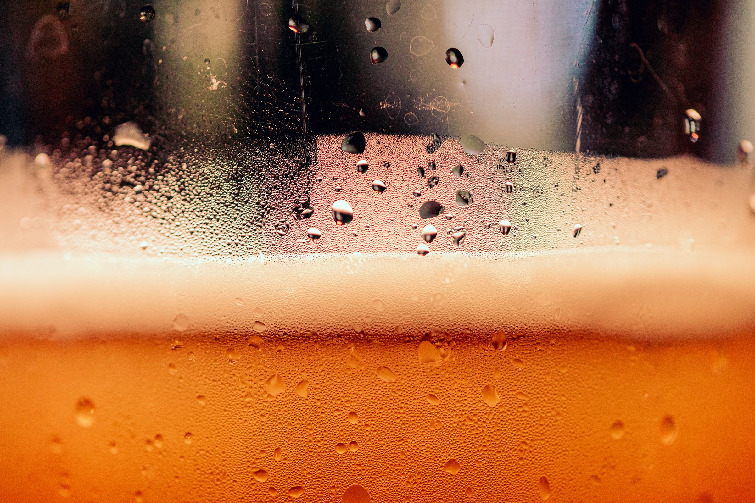 The Buzz About Beer and Your Bones!